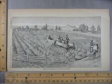 Rare Antique Original VTG Method Of Poisoning Hydronettes Illustration Art Print