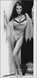 LILY MUNSTER ~ LITTLE RISQUE ~ NICE ! HALLOWEEN
