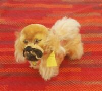 "Vintage Steiff Peky Pekinese; tiny 3"", tag, button, and diecut teddy name tag ID"