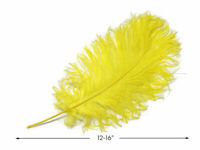 "10 Pieces - 12-16"" Yellow Ostrich Tail Feathers Centerpiece Halloween Costume"