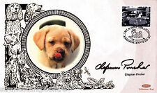 2001 chats & chiens-benham petite soie-signé par chapman pincher