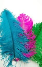 """5 OSTRICH PLUMES 8-18"""" Full Feathers MANY COLORS; Crafts/Halloween/Centerpiece"""