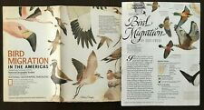 National Geographic maps Bird migration