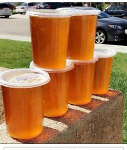 32oz Honey Organic and Pure- unfiltered
