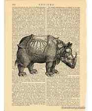 Rhinoceros Art Print on Antique Book Page Vintage Illustration Rhino Horn