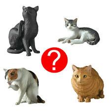 Blind Box Miniature Realistic Blk Wht Orn Tabby Cat Figure 1 Random Toy