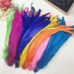 Long Rooster Tail Feathers Many Colour Fly Craft Hat Arts Decorations Wedding UK