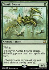 MTG Magic - (R) Eternal Masters - Xantid Swarm - NM