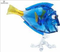 New in Box $325 SWAROVSKI Figurine Disney Dory Blue Fish Finding Nemo #5252048