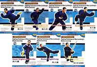 Fighting Technique of Wan Laisheng Wushu Kungfu Learning  Liang Shouzhong 7DVDs