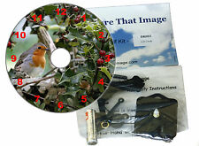 DIY CD Clock Kit Christmas Clock Robin in Holly Can be a Wall or Desk Clock