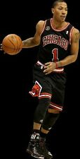 {24 inches X 36 inches} Derrick Rose Poster #1 - Free Shipping!