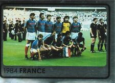 Panini 530 Winner 1984 France Frankreich UEFA Euro 2008 Austria - Switzerland