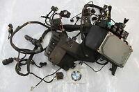 BMW K 1200 RS Kabelbaum Verkabelung Elektrik #R5540