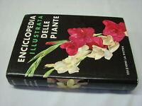 (Novak) Enciclopedia illustrata delle piante 1967 La pietra