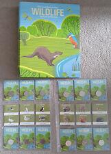 More details for 10p 2021 woodland mammals + coastal wildlife set 12 coins -  with album unc