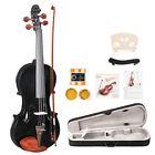Glarry GV103 4/4 Spruce Panel Violin Matte Black for sale