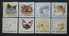 Magyar Posta Cat Series - 8v MNH