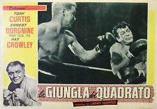 """""""LA JUNGLE DES HOMMES (THE SQUARE JUNGLE)"""" Affiche (Tony CURTIS,Ernest BORGNINE)"""