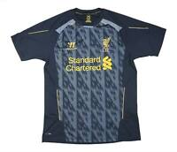 Liverpool 2013-14 Authentic Training Shirt (Excellent) L Soccer Jersey