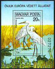 Hungary 2665 S/S, MNH. European Nature Protection Year. Great White Heron, 1980
