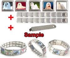 Maltese Dog Photo 18mm Mega Stainless Steel Italian Charms Bracelet + Tool HG36