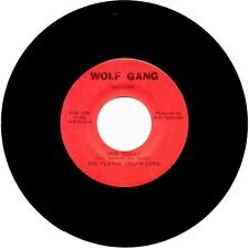 Obscure 45 by PLAYIN' TRUTH BAND - Skip Today / Luck - Garage Pop - Minnesota NM
