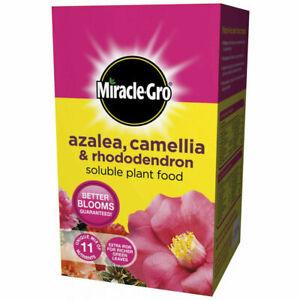 Azalea Camellia Rhododendron Plant Food Soluble Feed Miracle Gro 500g Fertiliser