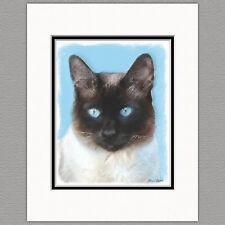 Siamese Cat Original Art Print 8x10 Matted to 11x14
