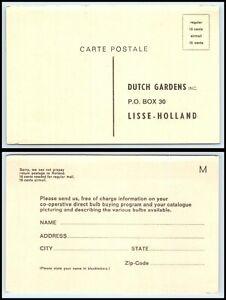 HOLLAND / NETHERLANDS Ad Postal Card - Dutch Gardens Inc, Lisse, Holland B13