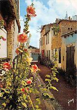 BR23950 Les Roses Tremieres le long d une Vieille rue Pitoreque  france
