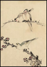 Japanese Drawing Reproduction: Hokusai - 3 Birds on branches - Fine Art Print