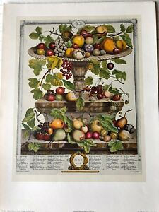 Robert Furber Twelve Months of Fruits: June Etching Print, 1970, Penn Prints