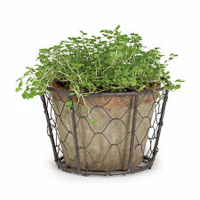 """Cottage Life 4"""" Large Vintage Terracotta Green Moss Pot Planter In Wire Basket"""