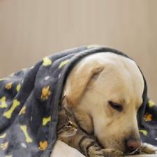 Super Soft Dog Blanket Warm Puppy Bed Cover Cute Paw Print Fleece Pet Mat
