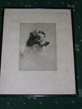 More details for large antique shetland sheepdog dog etching 1930 signed h. goffey