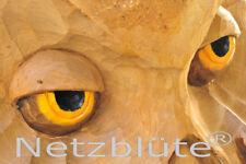 Deko-Bilder wandbilder mit Tier-Thema