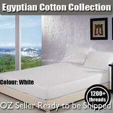 1200tc King Hotel Quality Egyptian Cotton Fitted Sheet - White