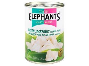 Jackfrucht in Wasser fleischersatz vegetarisch vegan grüne jackbaumfrucht 540g