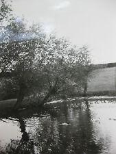 photographie vintage Allemagne 1935 Paysage étang  snapshot