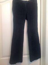 ANN TAYLOR Petites Dark Blue Modern Fit Lower on Waist Jeans Size 4P
