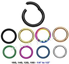 Hinged Seamless Segment Ring Cartilage Nose Hoop Labret Septum IP Surgical Steel