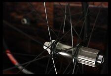 HANDBUILT Shimano XTR M9010 boost  / DT Swiss XM481 / Sapim Race black