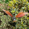 Amber Glass Dragonfly Outdoor Garden Decorative Metal Stake Ornament Sculpture