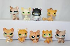 Littlest Pet Shop Cat Lot Kitten Orange Persian Black Cream Tan Flower 679 1363
