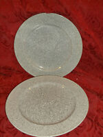 """Mikasa Ultrastone CU726 Grey 11"""" Dinner Plate Set Of 2 MINT! MORE AVAILABLE"""