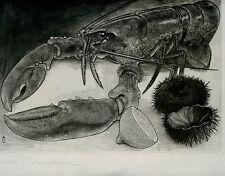gravure eau-forte originale d'Aldo Crommelynck signée.Nature morte,Homard