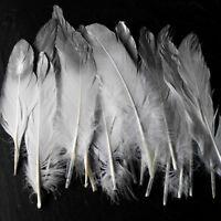 25 x Weiße Federn Silber Echte Hühnerfedern Vogelfedern Gefärbte Feder