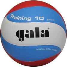 Gala TRAINING 10 BV5561S volleyball