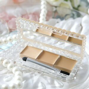 ☀CANMAKE color mixing Concealer 02 Natural Beige 3.9g From Japan F/S
